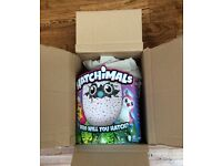 Hatchimals in box not opened
