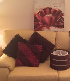 7 Next cushions, lamp shade and picture / canvas