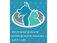 Edinburgh dog walking, cat sitting and equine services -City Centre & Southside