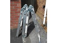 Folding ladder (12 foot)