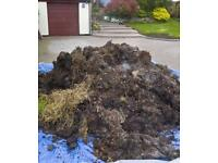 FREE Horse Manure - Well Rotted