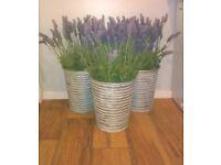 3 x Artificial lavender pots