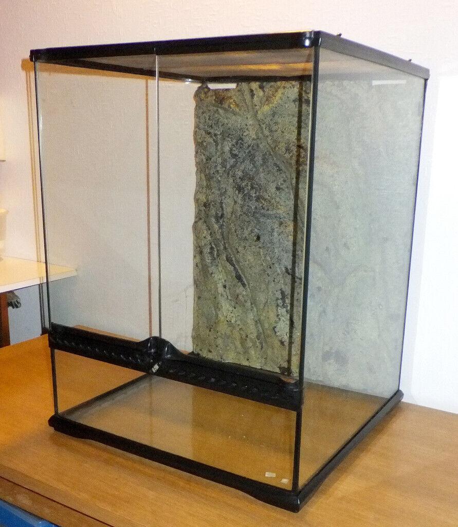 Exoterra Glass Vivarium Terrarium 24 X 18 X 18 In Forfar Angus