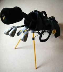 Golden Bear Golden Cub Junior Golf Set