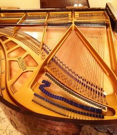 "Bluthner Model 10 Baby Grand Piano 5'3"" Fiddleback Mahogany High Gloss 1988"