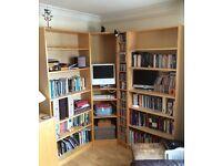 Bookshelves (corner shelving unit)