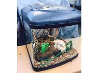 Interpet Fish Box Fish Tank Aquarium 48l