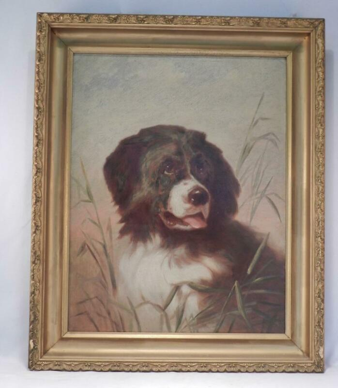 Antique 19th Century American Art~Orig Oil Painting~Newfoundland Dog Portrait