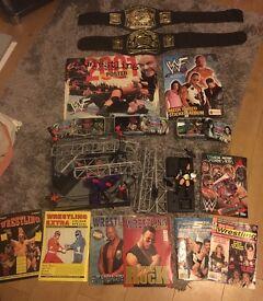 Wrestling bits