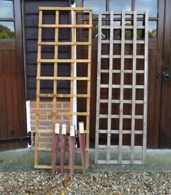 2 Trellis panels and 4 metal fence spikes