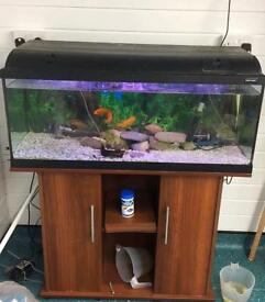 3 ft fish tank and aquarium stand