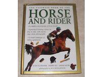 Horse Book Bundle, 12 Books