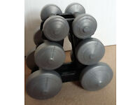 York Dumbbells with stand