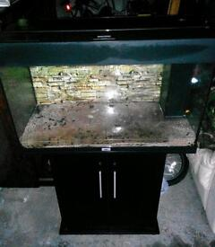 Fish tank (tropical set up)