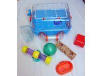 Combi 1 Hamster Modular Habitat
