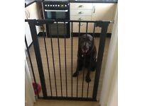Baby Dan tall pet / baby gate fits 73-86cm opening. Pressure fit. Black. Only used a week. Rrp £54