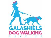 Galashiels Dog Walking Service