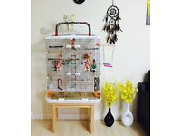 Large Tall Vision Cage With Tons of Perches, Toys And An Unused Playgym