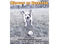 Welcome to Walkies of Kingston - Local dog walking service and more