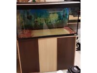 Fish tank....Fluval Roma 200
