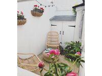 Two Beautiful Rattan Garden Chairs