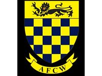 Adult Goalkeeper Required