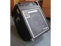 Hartke HyDrive 112c 250 watt Bass Combo Amplifier