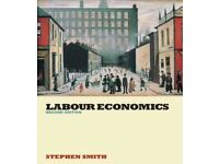 Labour Economics (2nd Edition)