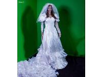 Wedding Dress Immaculate