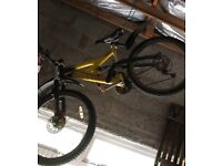 Mountain bike/disc brakes