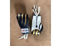 Fairtex Boxing gloves ( size 10-OZ )