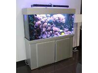Marine Aquarium 500liters Fish Tank