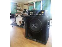 Ashdown 330 Spyder bass head amp + Peavey BW 115 bass cab speaker
