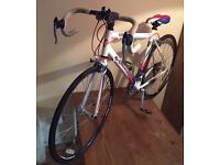 Men's Falcon Corsa Bike