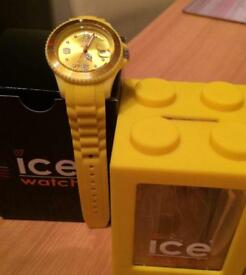 Yellow ICE Watch
