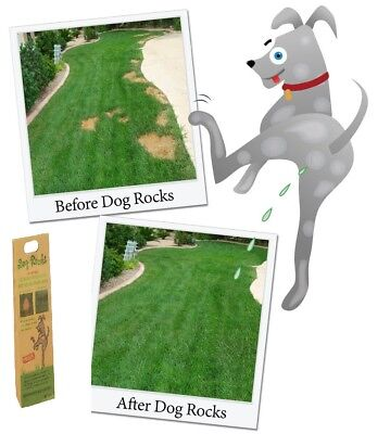 Dog Rocks 200g - Lawn Urine Burn Protection -  Posted Today if Paid Before 1pm