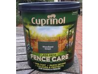 2x6L Shed and fence paint
