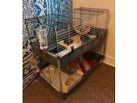 Guinea Pig Hamster two tier cage