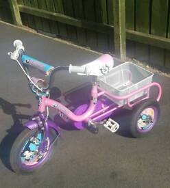 "12"" concept kitten tricycle"