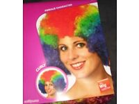 CLOWNS AFRO FANCY DRESS WIG RAINBOW COLOUR GREAT FOR A PARTY OR STAG DO