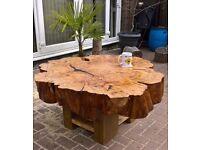 Unique Tree Trunk Coffee Table