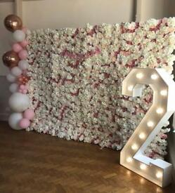 Flower wall to hire/ party balloon decorator
