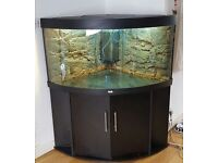 Extra large 350 litre corner shape aquarium fish tank *purchased for £1000* with accessories