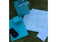 Tiffany & Co. Engagement Ring Platinum Diamond Band