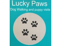 Lucky Paws Dog Walking - Dog walking/puppy visits from Inverkip to Kilmacolm
