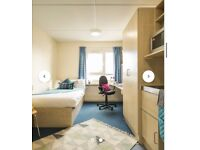 Looking for a tenant for Student accommodation