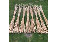 Garden Canes / Plant Supports 40 x 6ft