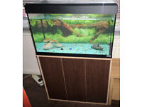 125 LITRE FLUVAL FISH TANK & STAND
