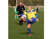 LADIES FOOTBALL PLAYERS WANTED, ESSEX PREM LEAGUE. FEMALE ONLY, LONDON / ESSEX, WOMANS TEAM 18+