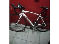 Specialized Allez light weight road bike carbon forks